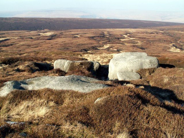 Bleaklow Meadows
