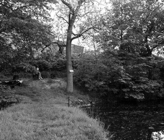 Mill Dam, County Mill