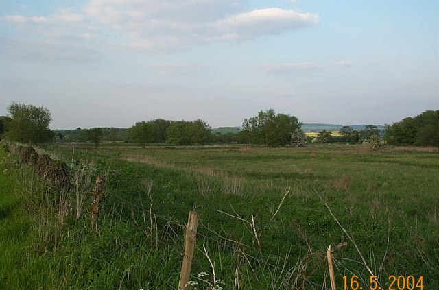 Cholsey Marsh 2004