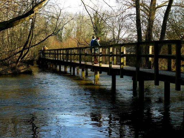 Wherwell - Footbridge Viewed From the Waters Edge