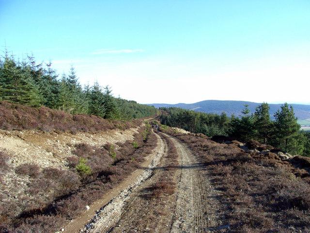 Pittenderich track