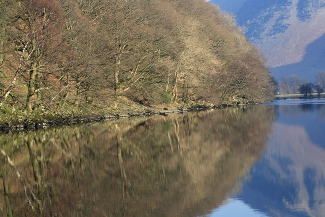 Low Wood and Brotherswater