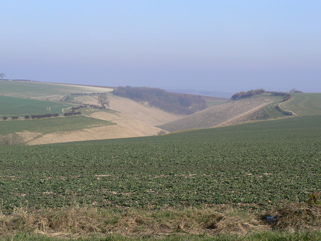 Horse Dale from York Lane
