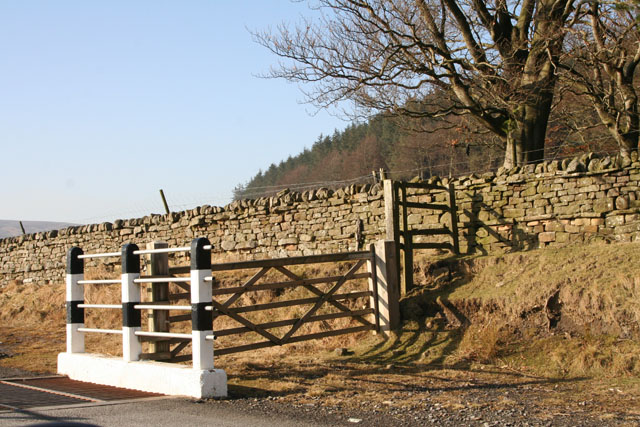 Gate next to cattle grid