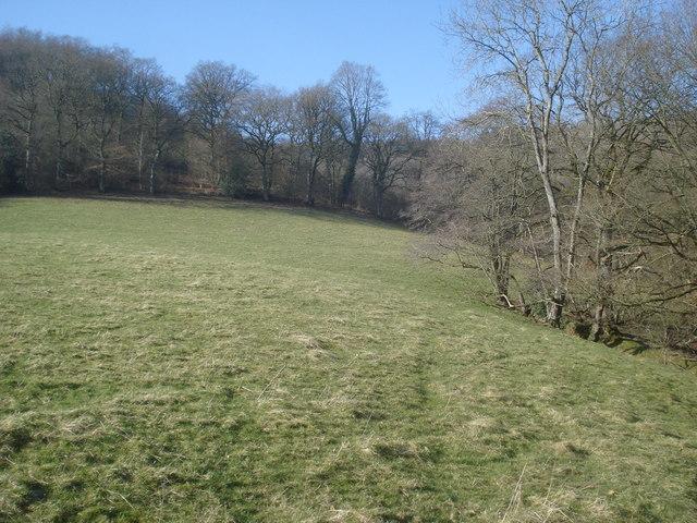 Public footpath near Knill Wood