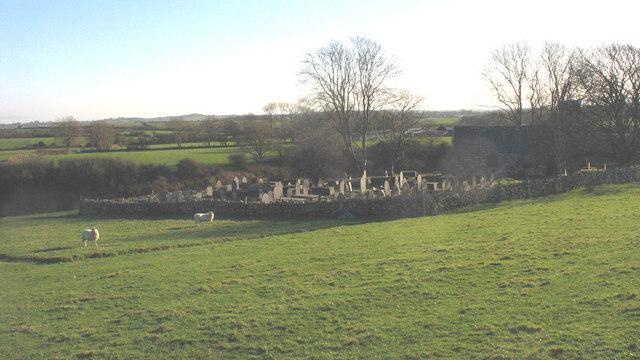 Sheep next to the Carnguwch Church cemetery