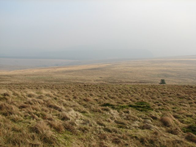 Moorland south of Greatmoor Hill