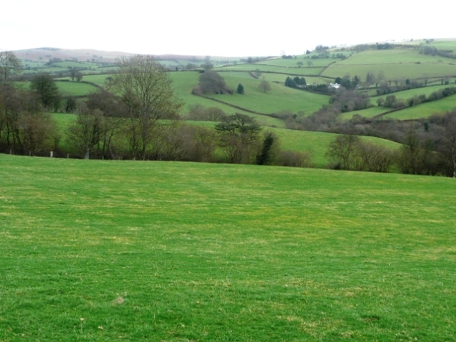 Fields east of Penisarplwyf