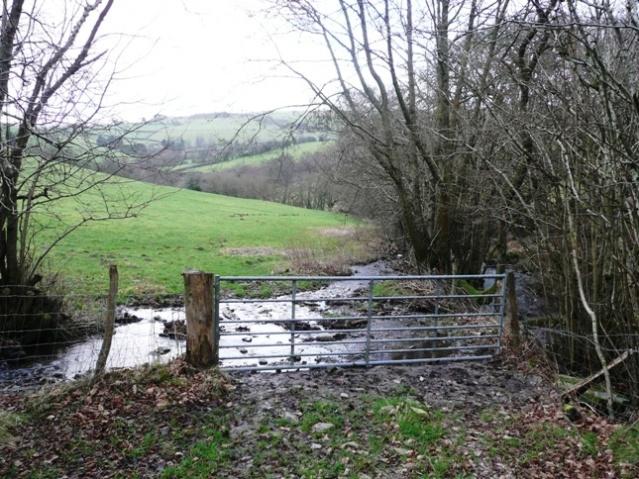 Pasture between Penisarplwyf and Pwllperran
