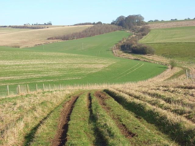 Byway near Stancombe Farm