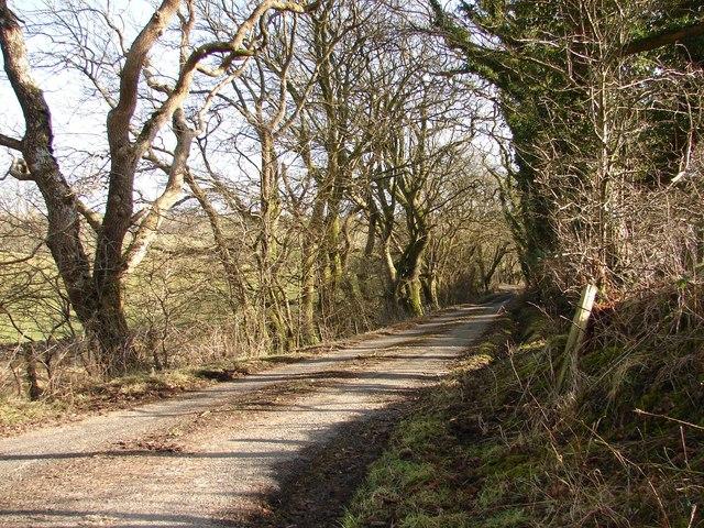 Gribdae Lane