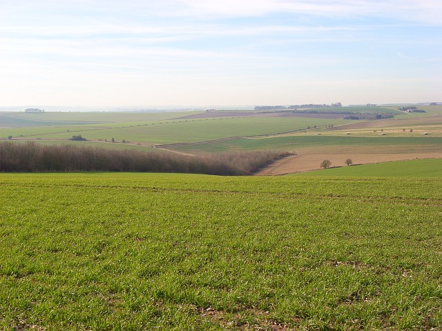 Farmland, Letcombe Bassett