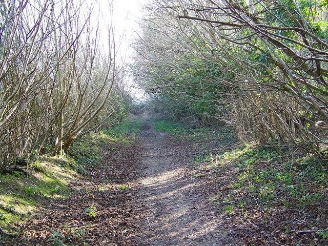 Footpath, Burwood