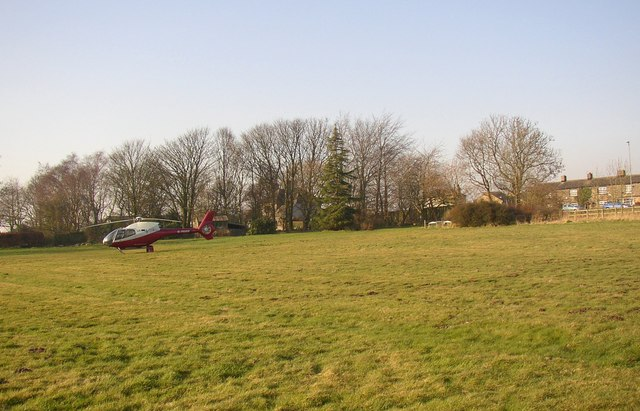 Helicopter grazing peacefully, Walton Lane (A643), Clifton