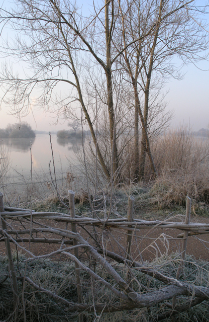 Traditional fencing, covered in frost