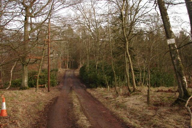 Road to Hardington House