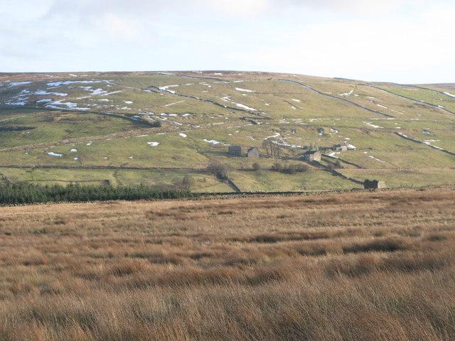Knock Meadows (2)