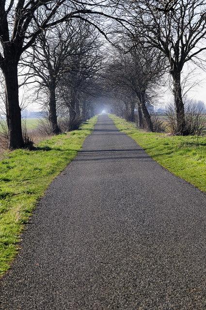 Thorney Dyke road