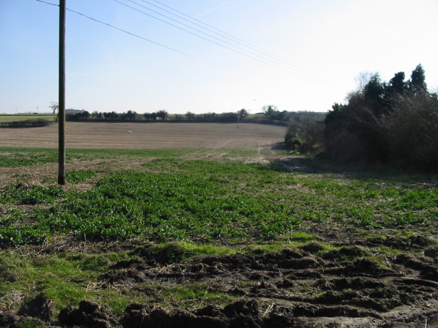 View across the fields at Rowling