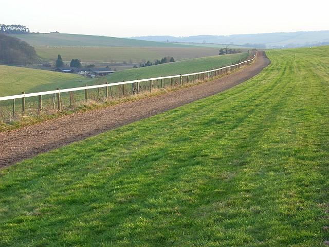 Gallop  above Lambourn
