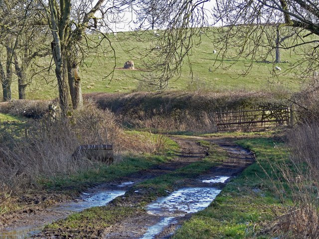 Track near Owston in Leicestershire