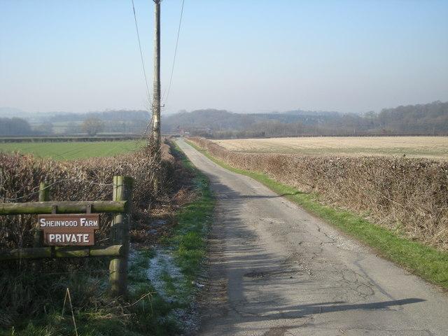 Driveway to Sheinwood Farm