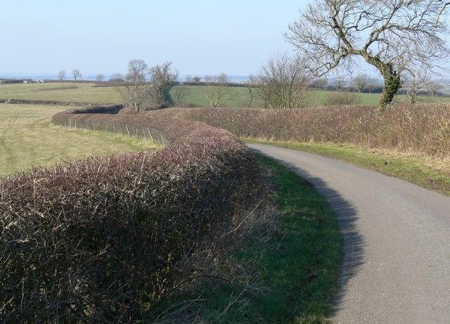 Hyde Lodge Road