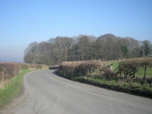 Lane to Sheinton
