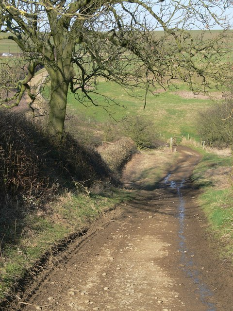Blackspinney Lane near Marefield