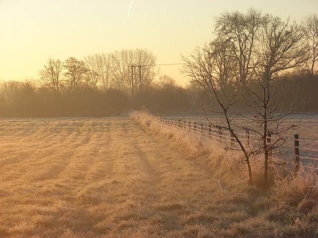 Charvil Meadows