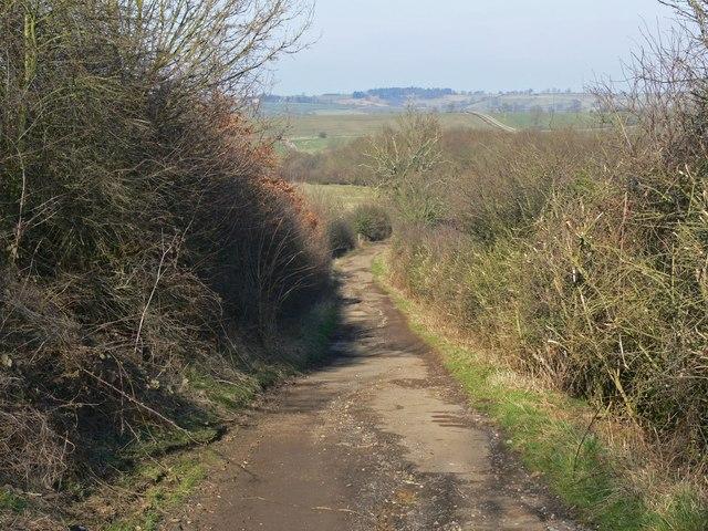 North along Marefield Lane