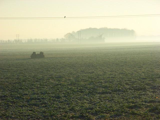 Farmland near Littlewick Green