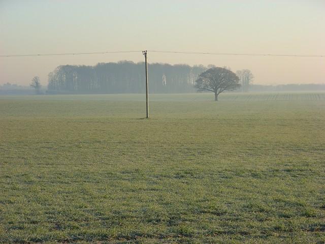 Farmland, Shottesbrooke