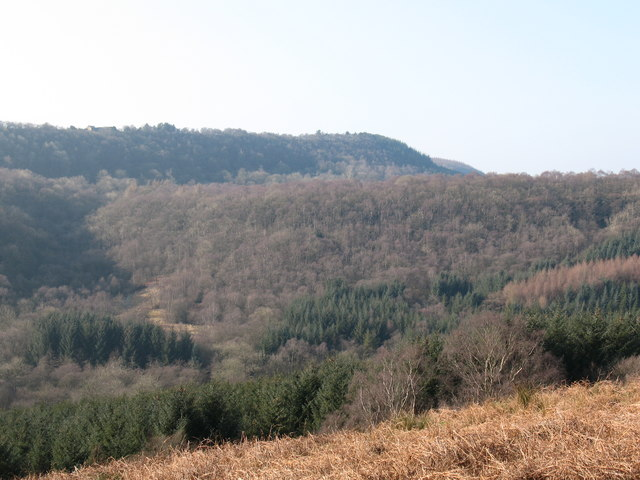 Across the dale