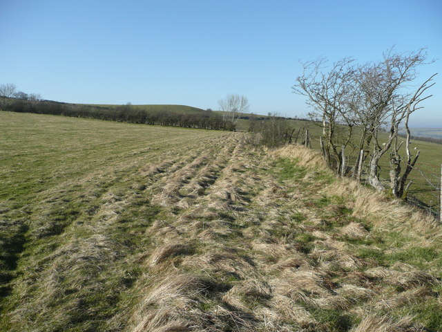 Field and footpath