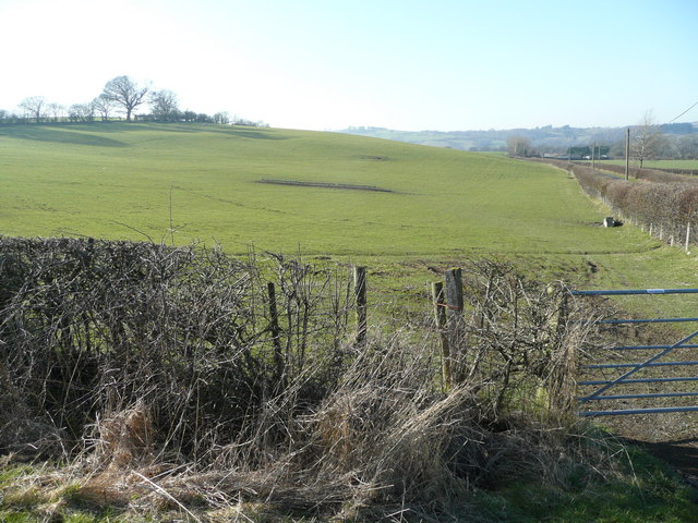 Pasture land north of the A488
