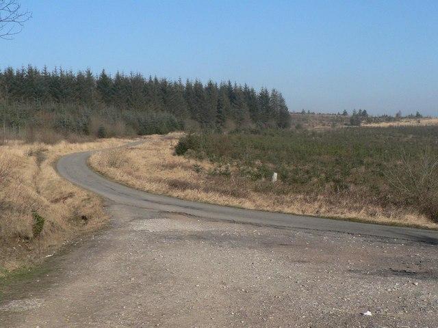 Llanwonno: southern approach