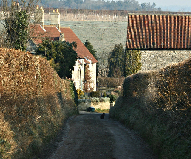 2008 : Cottage at Clays End near Newton St. Loe