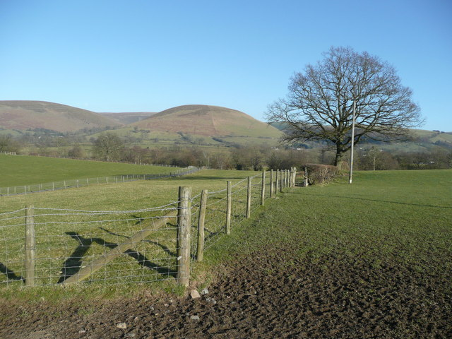 View east to Foel