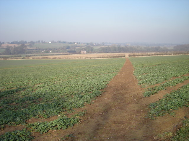 Marked right of way across fields