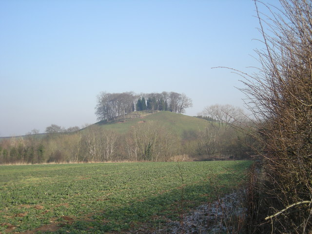 Lodge Hill from a gap in the hedgerow