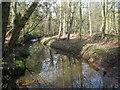 SJ7405 : Upstream from the footbridge by Row17
