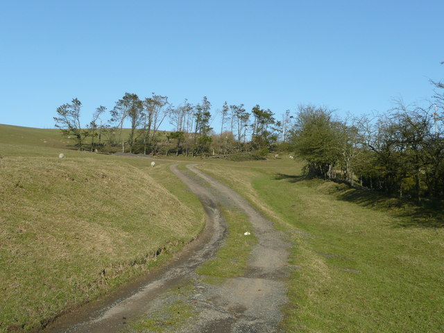 Bridleway into the Radnor Forest