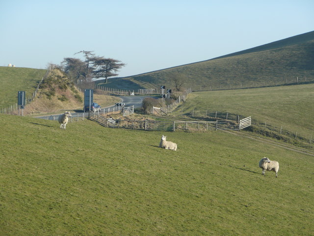 Sheep pasture by the A44 at the bwlch