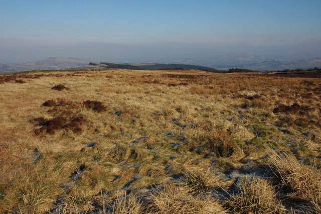 Moorland at Pym Chair
