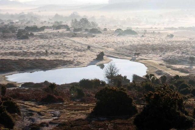 Windmillhill Pond