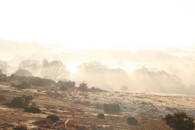 Misty View towards Ogdens