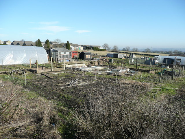 Allotments at High Etherley