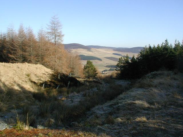 View down the burn to Glen Buchat
