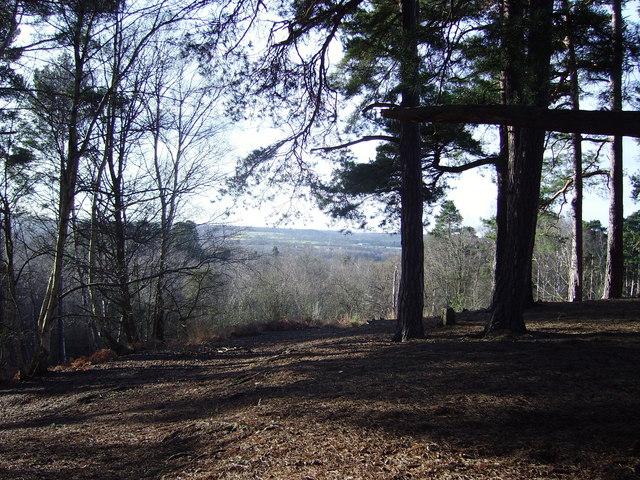 Viewpoint at Finchampstead Ridges